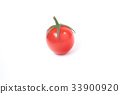 迷你番茄 33900920