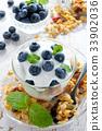 พาร์เฟท์,บลูเบอร์รี่,อาหารเช้า 33902036