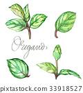 herb, herbal, ingredient 33918527