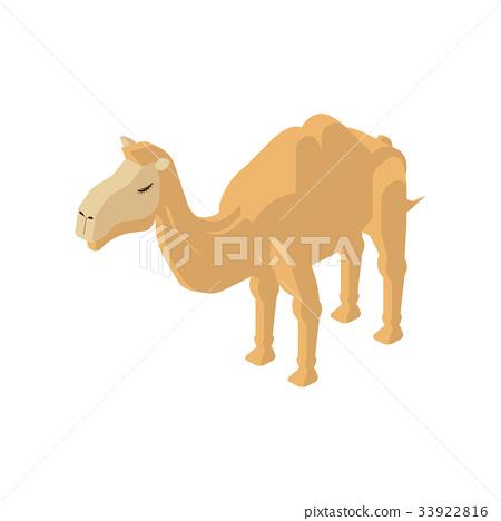 쌍봉 낙타 33922816