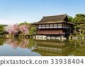 平安神宮 櫻花 櫻 33938404