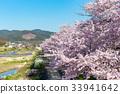 鴨川 京都 日本 33941642