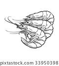 vector sketch cartoon sea lobster isolated 33950398