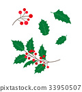 vector, berry, holly 33950507
