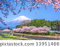 Mt. Fuji in Spring 33951466