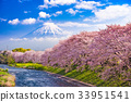 Fuji Mountain in Spring 33951541
