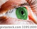 Green human eye 33951600
