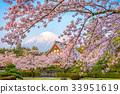 Fuji in Spring 33951619