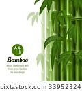 bamboo, ecology, concept 33952324