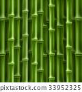 bamboo, ecology, concept 33952325