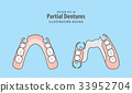 Partial Dentures illustration vector. 33952704