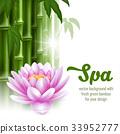 spa, ecology, concept 33952777
