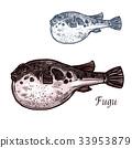 Fugu fish sketch of japanese pufferfish 33953879