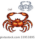 crab animal sketch 33953895
