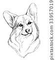 sketch dog pet 33957019