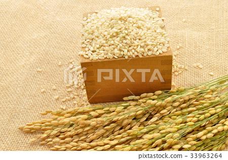 brown rice 33963264