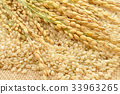 brown rice 33963265
