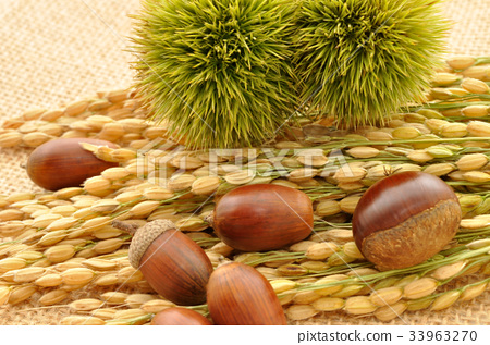 Fruit 33963270