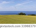 佐渡市 佐渡岛 自然景色 33966370