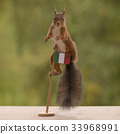 squirrel standing on a flag of Italy 33968991
