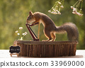 squirrel holding  on to a harp 33969000