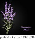 花朵 花 花卉 33970096