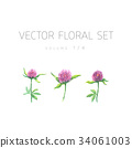 Bright watercolor set of vector flowers with leaf  34061003