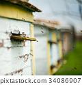 蜜蜂 蜂窝 养蜂人 34086907