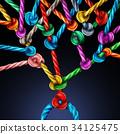 Branching Network 34125475