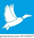 蓝色 鸭子 鸭 34139207