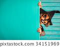 Halloween Pumpkin Autumn Holiday Concept 34151969