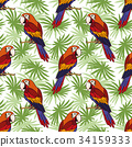 Seamless, Parrot and Leaves 34159333