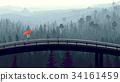 Wild coniferous wood in morning fog with bridge. 34161459