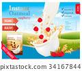 milk, vector, oatmeal 34167844