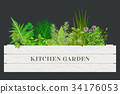 White wooden crate of farm fresh cooking herbs 34176053