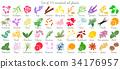 essential, oil, aromatherapy 34176957