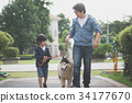 father and son walking with a siberian husky dog 34177670