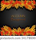 Autumn background with rowan 34178690