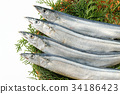 ปลา,ฤดูใบไม้ร่วง,อาหาร 34186423
