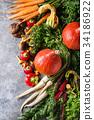 Variety of autumn harvest vegetables 34186922