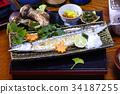 竹刀魚 梭魚 針魚 34187255