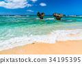 여름, 바다, 해변 34195395