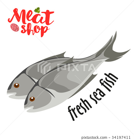 Meat vector - fresh sea fish icon. Fresh flat meat 34197411