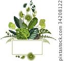 植物 設計 向量 34208122