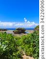 오키나와, 바다, 바위 34226906