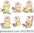 幼兒 貓 一隻貓 34228535