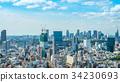 tokyo, scene, scenery 34230693