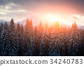 Fantastic landscape with snowy trees 34240783