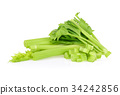 fresh celery isolated on white background 34242856