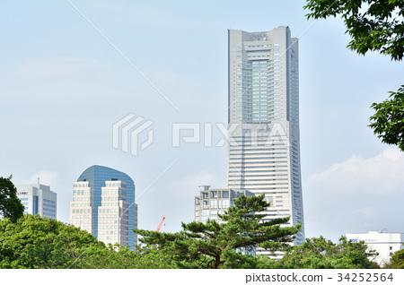 横滨 地标大厦 动物园 34252564